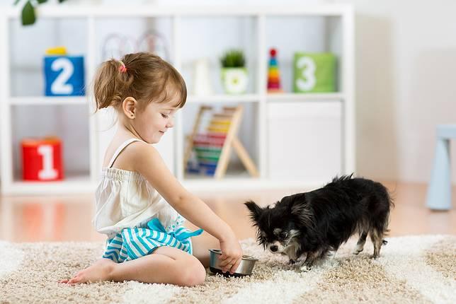 """เผยผลการวิจัย""""การให้ลูกดูแลสัตว์เลี้ยง""""มีผลดีอย่างไร?"""